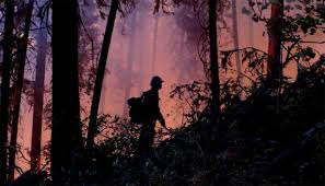 Wildfire Jordan Mt by Back 40 U0027tsunami Of Settlement U0027 Reaches Montana During First