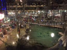 bass pro shops at the pyramid all you need to
