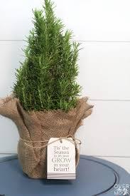mini tree gift idea i nap time