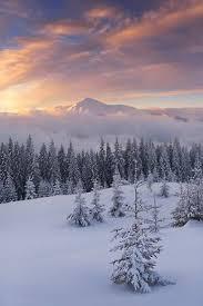 imagenes lindas naturaleza pin de александра остерова en зима pinterest fotos lindas