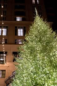 chicago tree lighting 2017 the waldorf astoria christmas tree lighting sed bona