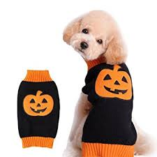 pet sweaters amazon com nacoco sweater pumpkin pet sweaters