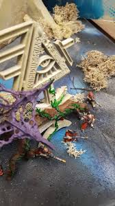 webway photo albums armies on parade board eldar webway album on imgur