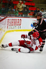 the resurgence of harvard men u0027s hockey sports the harvard crimson