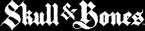 Black Flag With White Cross Ubisoft Skull And Bones