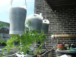Upside Down Tomato Planter by Upside Down Hanging Self Watering Earth Filled Box 6 Steps With