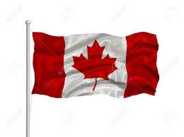 illustration of waving canadian flag on white stock photo picture