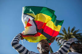 Flag Za Zimbabweans In South Africa Protest Against Mugabe Groundup