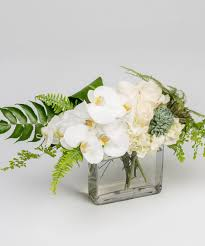orchid arrangements orchid delivery philadelphia pa robertson s flowers