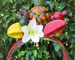 fruit headband tropical headband gumtree australia free local classifieds