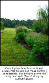 defining your home garden and travel july 2009