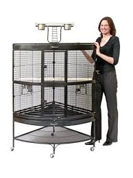 best 25 parrot cages ideas on pinterest parrot toys conure