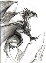54 best lizards and dragons images on pinterest lizards dragons