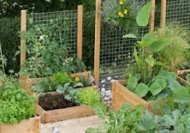 full size of outdoor living patio garden design ideas small back