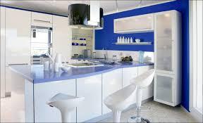 Grey Blue Cabinets Kitchen Renovation Remodeling Dimensions Model Backsplash