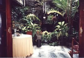 indoors garden the indoor garden