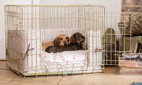 Dog Crate Covers Dog Crate Bumper And Cushion Set In Taupe Multi Spot