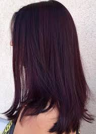 kankalone hair colors mahogany 35 bold and provocative dark purple hair color ideas part 2