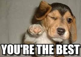 Your The Best Meme - you re the best puppypoint meme on memegen