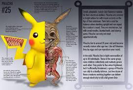 detailed illustration pokemon anatomy pkmn information