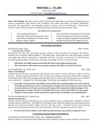 Resume Samples Consulting by Mesmerizing 100 Resume Examples For B2b Sales Format Templates
