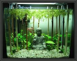 aquarium decoration ideas freshwater 10 gallon fish tank stand ideas for your aquarium fish tanks fish