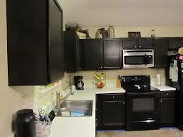 kitchen kitchen cabinet paint colors black shiny cabinets