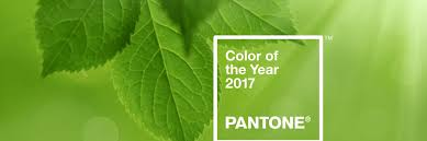 pantone color of the year 2017 greenery vanguard seattle