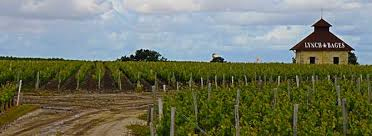 wine from château lynch bages 10 things every wine lover should about lynch bages
