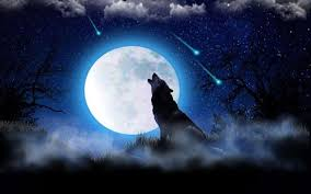 wolf moon song android apps on play