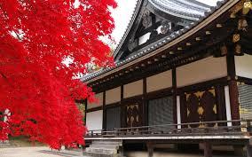 foxy japanese architecture kyoto design architecture watch full
