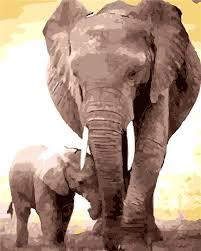online get cheap elephants family aliexpress com alibaba group