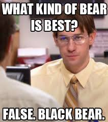 Dwight Schrute Meme - image 158047 schrute facts know your meme