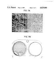 patent us4829000 reconstituted basement membrane complex with