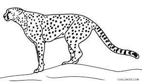 printable cheetah coloring pages kids cool2bkids cheetah