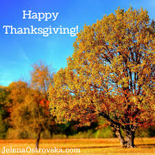 my 2015 thanksgiving message 6 things i m grateful for