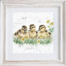 framed greeting cards framed greeting cards wrendale designs by dale