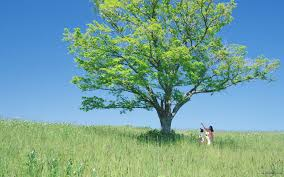 photography people nature desktop wallpaper i hd images