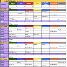 Beast Meal Plan Spreadsheet 21 Day Fix Sneak Peek With Bonus Editable Pdf Meal Tracker
