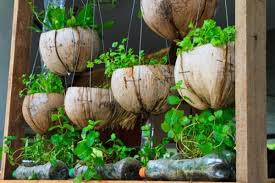 21 kitchen herb garden ideas fit for every space tastymatters com