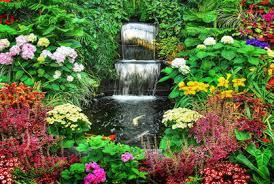 How To Design A Flower Bed How To Design A Tropical Garden Exprimartdesign Com