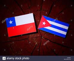 Chilian Flag Chilean Flag Waving Stock Photos U0026 Chilean Flag Waving Stock