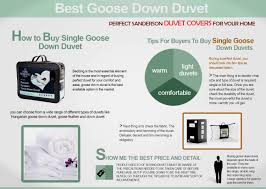 Best Goose Down Duvet Best Goose Down Duvet Visual Ly
