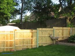 Backyard Privacy Fence Ideas Backyard Privacy Fences Inspirational Lawn Garden Privacy Fence