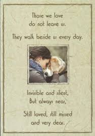 pet sympathy cards sympathy cards cat sympathy cards pet loss