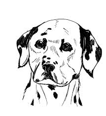 little fire dog coloring pages little fire dog coloring pages