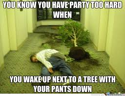 Pants Party Meme - you know you have party too hard when funny tree meme