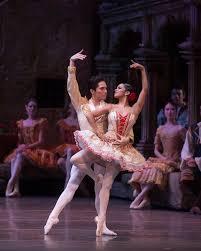 american ballet theatre u2013 don quixote u2013 new york dancetabs