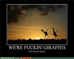 Meme Giraffe - giraffe meme google search giraffes pinterest giraffe meme
