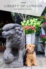 pets news tips u0026 guides glamour the best dog friendly restaurants in london u2013 bleak house